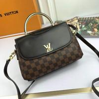 新品Louis Vuitton 路易威登 LV手采