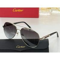 Cartier(卡地亚) 男士蛤蟆镜眼镜